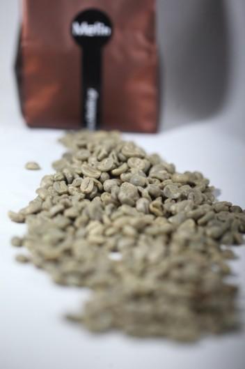 Ωμός Πράσινος Καφές Tanzania Toroka Microlot 1κgr