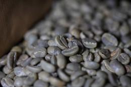 Ωμός Πράσινος Καφές Ethiopia Yirgacheffe Misty Valley G1 Gedeo Farm Natural  1000γρ